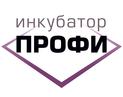 Инкубатор ПРОФИ